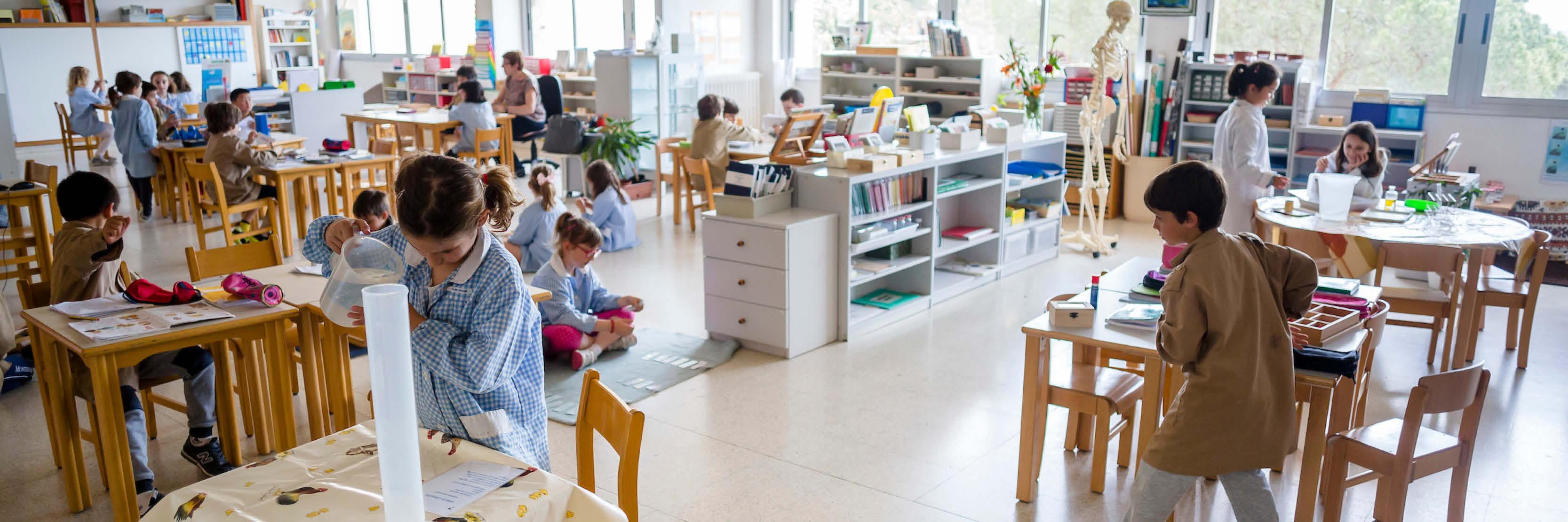Curs de postgrau AMI d'Assistent Montessori